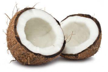 kokos_slika
