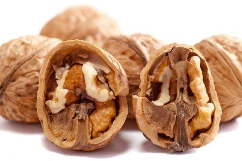 walnuts-2312506__340
